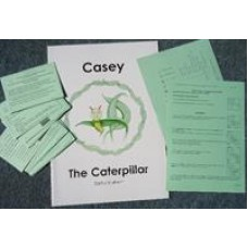 Magic Caterpillar Handwriting Programme - Big Book with quick reference cards