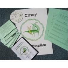 Magic Caterpillar Handwriting Programme Kit A+